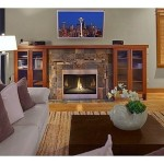 Great Fireplace How Want Decorate Dream House