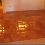 Grout Cleaning And Floor Experts Beautiful Mexican Tile