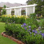 Guest Blogger How Care For Your Garden Tight Budget