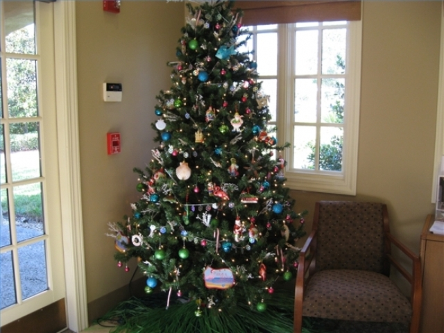 Guidelines Decorating Your Christmas Tree