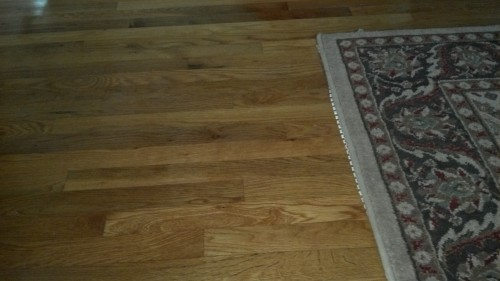 Hardwood Bamboo Flooring Laminate