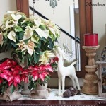 Holiday Decorating Sometimes Less More Authentic Home Blog