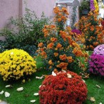 Home Decorating Fall Flowers Inspiring Ideas