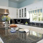 Home Design Best Kitchen Countertop Trends