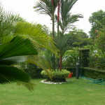 Home Garden Designs Pictures Images Galleries