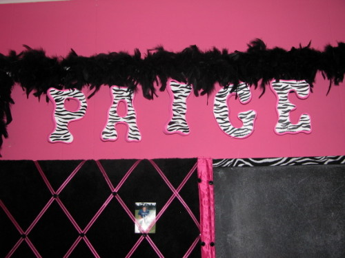 Hot Pink Zebra Print Girls Room Designs Decorating Ideas