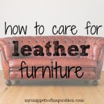 How Care For Leather Furniture Snippets Inspiration