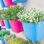 How Create Living Wall For Your Home Cooking The Seat