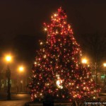 How Decorate Christmas Tree Pics Pictures