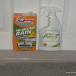 How Eliminate Odors Your Home From What Odor Review Makobi