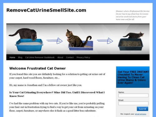 How Get Rid Cat Urine Stains Odor From Your Home Review