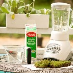 How Grow Your Own Moss From Apartment Therapy Cool Links