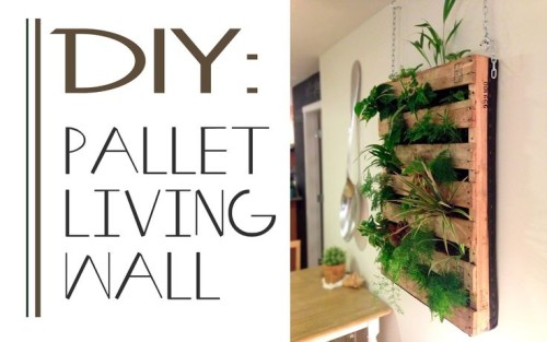 How Make Pallet Living Wall Home