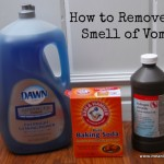 How Remove The Vomit Smell From Anything Meaningfulmama