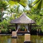 Ideas For Perfect Dream Garden Your Amazing Places