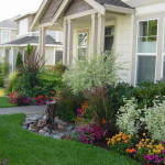 Ideas Front Yard Tree Landscaping Colorful Flowers Plants