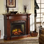 Ideas Living Room Fireplace Clasic For