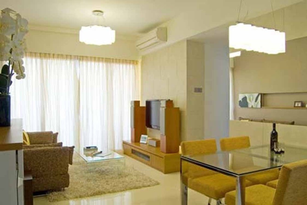 Ideas Modern Small Apartment Living Room Decorating
