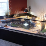 Indoor Pond For Turtles Complete Features