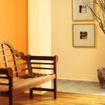 Interior Color Trends For Submited Images Pic Fly