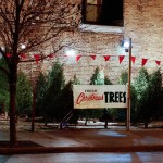 Ish Christmas Tree Lot Outdoor Spaces