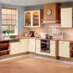 Kitchen Black Cabinets Case Also Modern Designs
