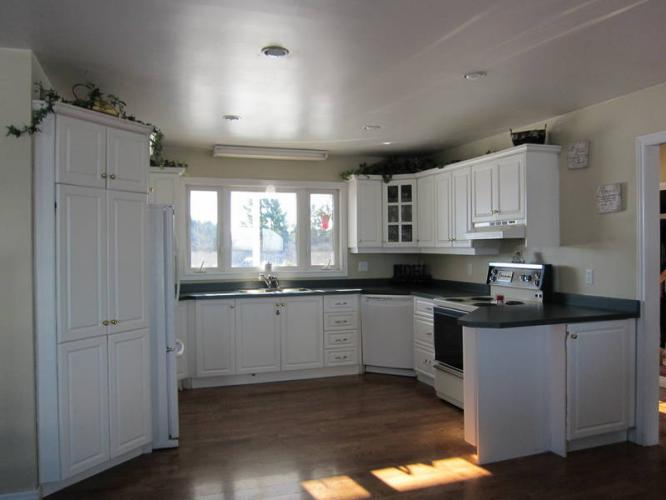 Kitchen Cabinets For Sale Have Look Discount