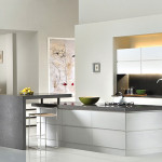 Kitchen Designing Looking Very Exciting Many