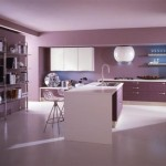 Kitchen Purple Room Design Ideas Great Decoration