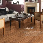 Laminate Floor Which Better Richmond Water Heaters Hardwood