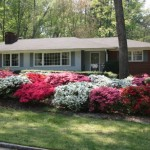 Landscape Planning Your Own Walter Reeves The Georgia Gardener