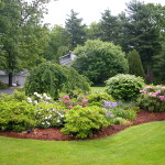 Landscaping Design Residential Lawn Cedarlawn