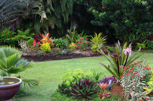 Landscaping Ideas Backyard Pictures Aquaponics Systems Design