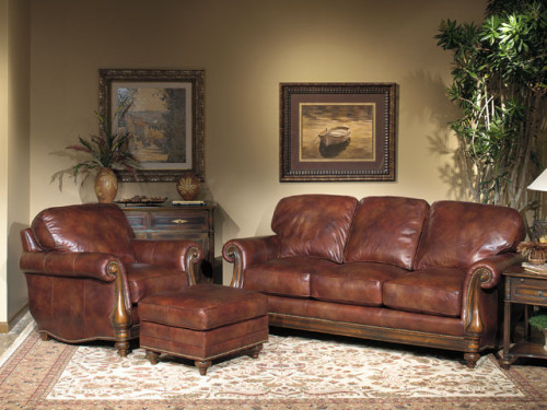 Leather Furniture Care Star