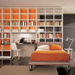 Library Design Personal Homelibrary Ideas Orange Decorating Color