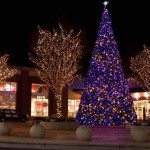 Lighted Christmas Trees For Porch Flowers And Plants