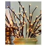 Lighted Twig Branch Bulb Jetton Miller Home Suttons Bay
