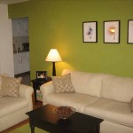 Living Room Color Pictures
