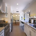 Long Narrow Kitchen Design Pictures Remodel Decor And Ideas Page
