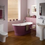 Luxury Ideas Decorating Interior Modern Bathroom Design The Best