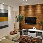 Luxury Living Room Small Apartment Charming Design Wonderful And