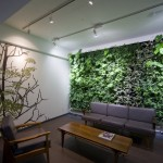 Make The Room Cool And Fresh Interior Plant Walls