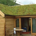 Making Your Home Energy Efficient Promoting Eco Friendly Lifestyle