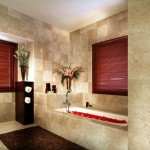 Master Bathroom Ideas Picture Pictures Home And House
