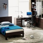 Modern Boys Bedroom Furniture And Accessories Home Interior