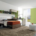 Modern Contemporary And Young Bedroom Decorating Ideas Home