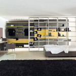 Modern Setting Mens Bedroom Designs Selected Bed Furniture