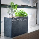 Modern Sprout Hydroponic Planter Windowsill