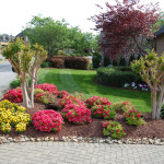 Mulching Annuals And Weed Control Keeps This Landscape Looking Sharp