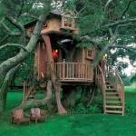 Now Tree House Looked Nothing Like These Fancy Images The Base